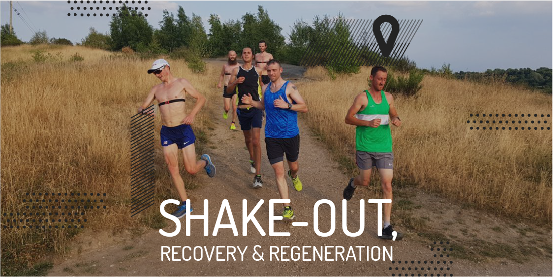 Shake-out, recovery and regeneration runs